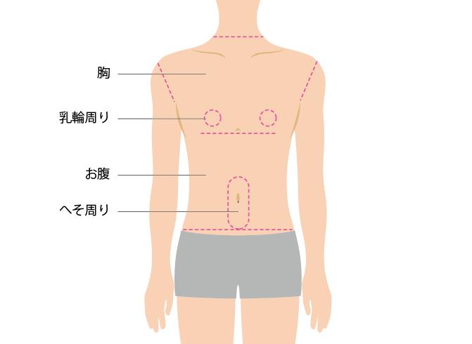 胸&お腹コース